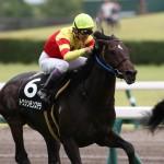 [第317回]MIWAのヘッポコ競馬予想~京都記念GⅡ