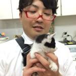 [第437回]子猫がナポにやって来た!!(またかよ!!)