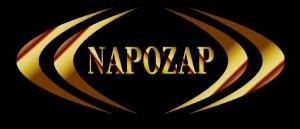 ナポザップロゴ