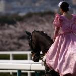 [第753回]ロデム三浦の競馬予想!桜花賞【G1】
