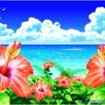[第871回]海物語をアツく語る日