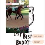 [第1002回]MIWAのへっぽこ競馬予想~高松宮記念GI 編