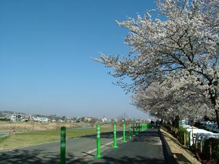 shiyakusho2