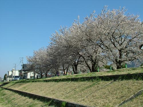 shiyakusho500