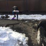 [第1282回]雪の後処理はまだまだ続く